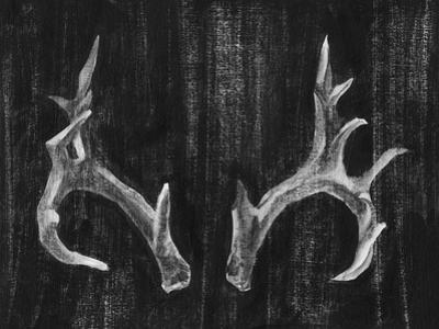 Rustic Antlers I