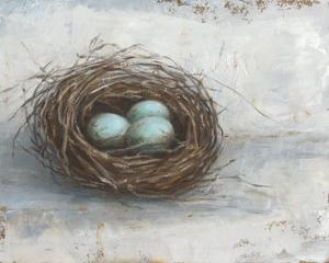 Rustic Bird Nest I by Ethan Harper