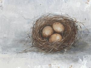 Rustic Bird Nest II by Ethan Harper
