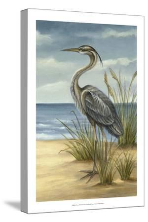 Shore Bird II by Ethan Harper