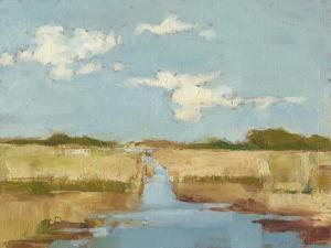 Summer Wetland I by Ethan Harper