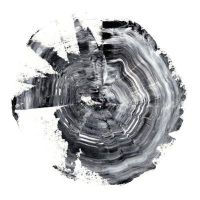 Tree Ring Abstract II by Ethan Harper