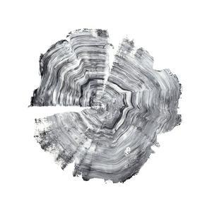 Tree Ring Abstract IV by Ethan Harper