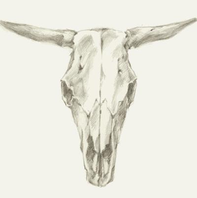 Western Skull Mount II by Ethan Harper