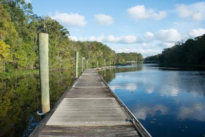 Boardwalk along Wades Creek, near St. Augustine, Florida, United States of America, North America by Ethel Davies