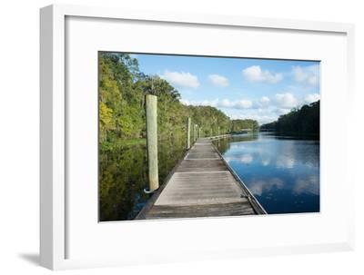Boardwalk along Wades Creek, near St. Augustine, Florida, United States of America, North America