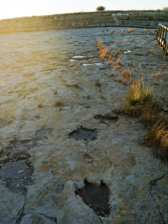 Dinosaur Tracks, Clayton Lake State Park, New Mexico, USA