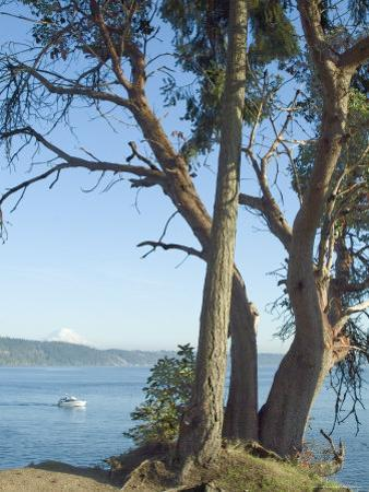 Gig Harbour, Washington State, USA
