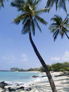 Kona State Beach, Island of Hawaii (Big Island), Hawaii, USA by Ethel Davies