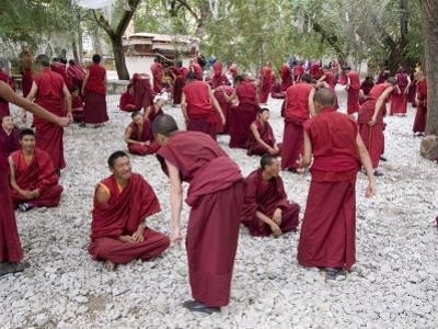 Monks Learning Session, with Masters and Students, Sera Monastery, Tibet, China