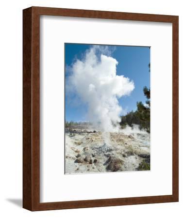 Norris Geysers, Yellowstone National Park, Unesco World Heritage Site, Wyoming, USA