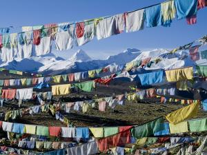 Prayer Flags, Himalayas, Tibet, China by Ethel Davies