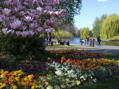 Regent's Park, London, England, United Kingdom, Europe