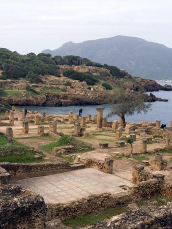 Roman Site of Tipasa, UNESCO World Heritage Site, Algeria, North Africa, Africa