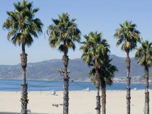 Santa Monica Beach, Santa Monica, California, USA by Ethel Davies