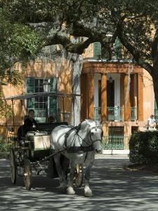 Savannah, Georgia, USA by Ethel Davies