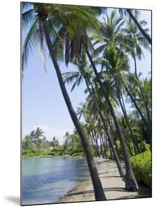 Waikaloa Beach, Island of Hawaii (Big Island), Hawaii, USA by Ethel Davies
