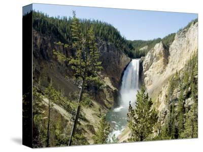 Yellowstone Canyon, Yellowstone National Park, Unesco World Heritage Site, Wyoming, USA