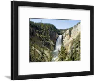 Yellowstone Canyon, Yellowstone National Park, Unesco World Heritage Site, Wyoming, USA