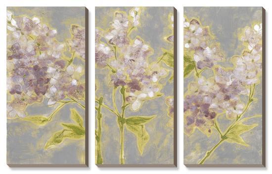 Ethereal Flowers-Jennifer Goldberger-Canvas Art Set