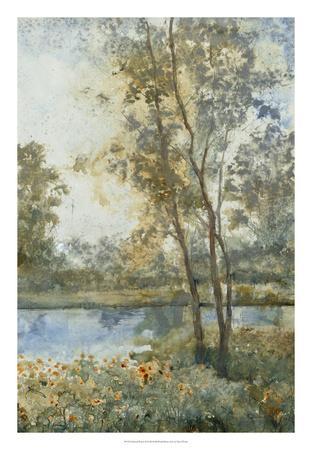 https://imgc.artprintimages.com/img/print/ethereal-waters-ii_u-l-f8s26m0.jpg?p=0