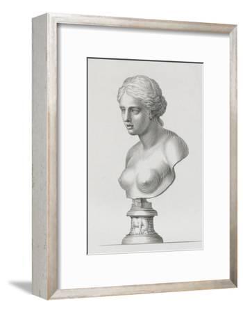 Tableau du Cabinet du Roi, statues et bustes antiques des Maisons Royales Tome II : planche 16