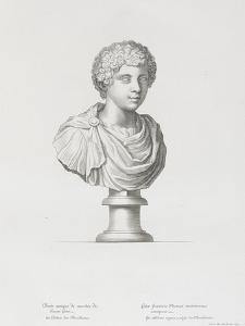 Tableau du Cabinet du Roi, statues et bustes antiques des Maisons Royales Tome II : planche 20 by Etienne Baudet
