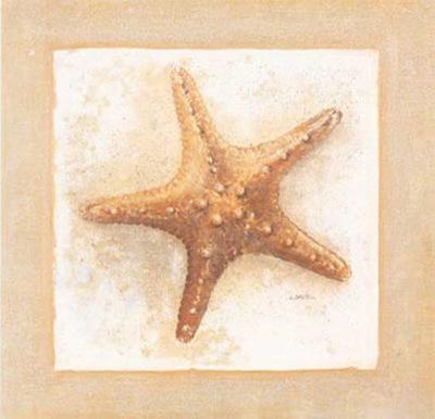 Etoiles de Mer IV-Laurence David-Art Print