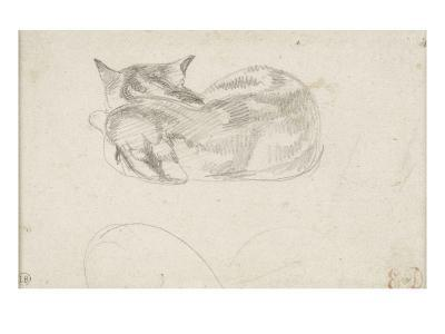 Etude de chat couché vu de dos-Eugene Delacroix-Giclee Print