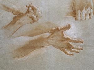 Etude de mains