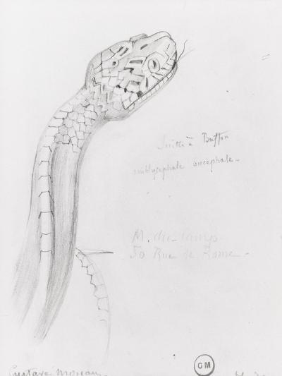 Etude de serpent pour Hercule et l'hydre de Lerne-Gustave Moreau-Giclee Print