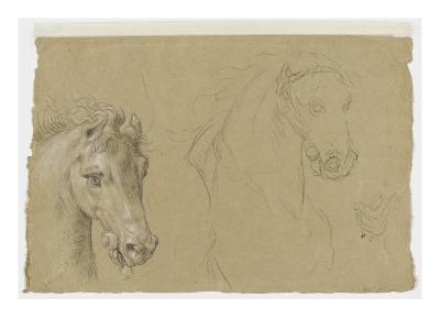 Etudes pour la tête d'un cheval-Pierre Mignard-Giclee Print
