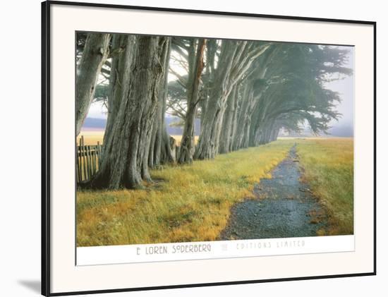 Eucalyptus Fog-Loren Soderberg-Framed Art Print