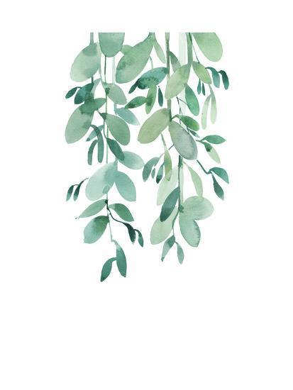 Eucalyptus-A.V. Art-Art Print