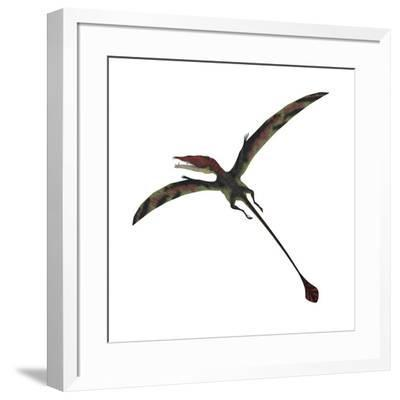 Eudimorphodon, a Pterosuar from the Late Triassic Period--Framed Art Print
