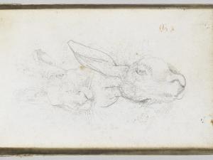 Album : Deux t�s de li�e by Eugene Delacroix