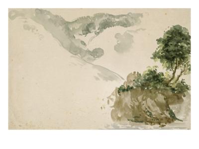 Arbres près d'un torrent dans un paysage de haute montagne; séjour aux Eaux Bonnes dans les