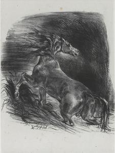 Cheval effrayé par l'orage, 1828 by Eugene Delacroix
