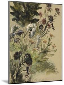 Etudes de fleurs : Soucis, hortensias et reines- marguerites; vers 1840-1850 by Eugene Delacroix