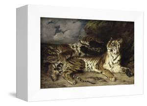 Jeune tigre jouant avec sa mère by Eugene Delacroix