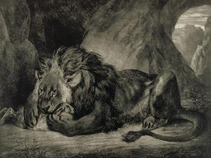 Lion de l'Atlas by Eugene Delacroix