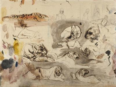 Sketches of Tigers and Men in 16th Century Costume, 1828-29