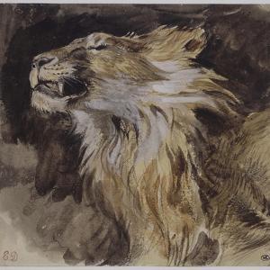 T� de lion rugissant by Eugene Delacroix