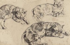 Trois études de chats allongés, la tête vers la droite by Eugene Delacroix
