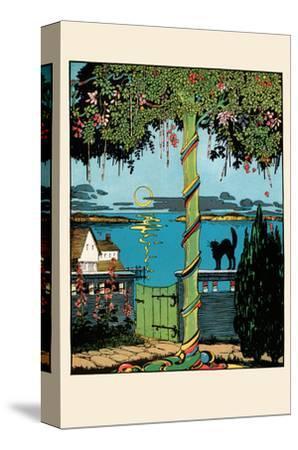 Sugar Plum Tree and the Black Cat