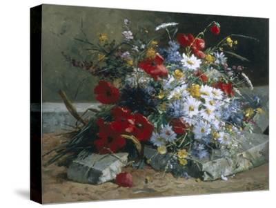 Daisies, Cornflowers Anf Poppies