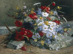 Daisies, Cornflowers Anf Poppies by Eugene Henri Cauchois
