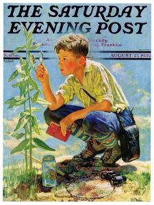"""Boy Botanist,"" Saturday Evening Post Cover, August 27, 1932 by Eugene Iverd"