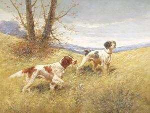 Pointers by Eugene Petit