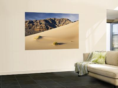 Eureka Sand Dunes with Last Chance Range in Background-Witold Skrypczak-Wall Mural